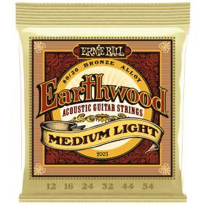 Ernie Ball Earthwood Medium...