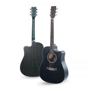 SWC Bk Akustična Gitara by...
