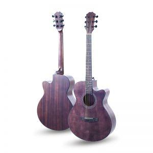 SW40 Brown Akustična Gitara...