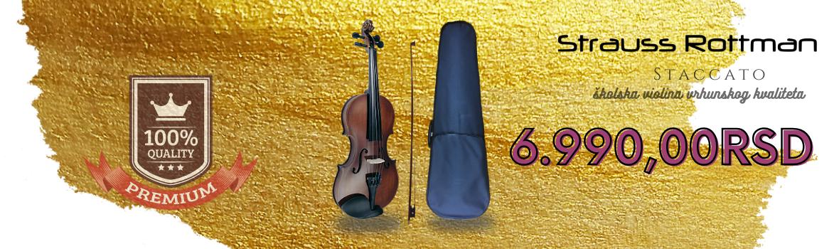 Preporuka profesora muzičkih škola